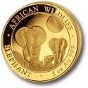 Somalia Elephant, African Wildlife, 1oz Gold, 2014