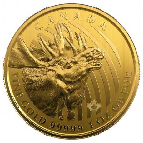"""""""CALL OF THE WILD"""" COIN 6 - Canada Moose: 99999 Gold"""