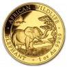 Somalia Elephant 1 oz 2019 Gold
