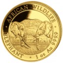 Somalia Elephant 1 oz 2020 Gold