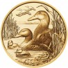 Wildlife in our Sights (The Mallard)  1/2 oz  2018 Gold