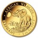Somalia Elephant 1 oz 2016 Gold