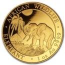 Somalia Elephant  1 oz 2017 Gold
